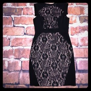 Stunning Adrianna Papell Black & Nude Lace Dress
